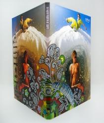 Дигипак DVD  - вид на разворот