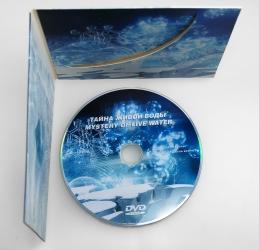 Диджифайл CD формата. Печать по диску шелкографией.