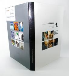 Digipack DVD формата  на 2 диска - оборот, корешок