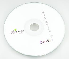 Тиражирование CD, печать на диске шелкографией