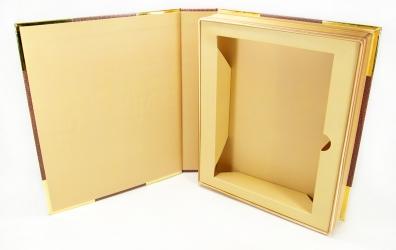 Ложемент для ДВД амарея и книги.