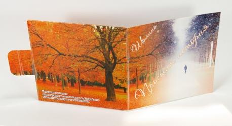 Дигифайл для 1 CD диска, вид на оборотную сторону.