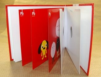 DVD digibook альбомной ориентации, буклет, 4 кармана для дисков по бокам
