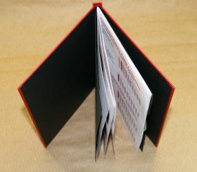 Диджибук DVD для 1 диска и буклета, конструкция на скобе.