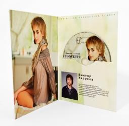 Диджифайл DVD для 1 диска, 4х полосный, вид изнутри.