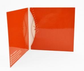 Digisleeve CD для 1 диск, крепление диска в карман.