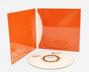 Диджислив CD формата для 1 диска.