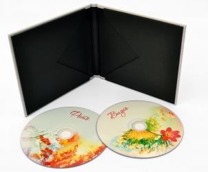 Креативная упаковка для дисков