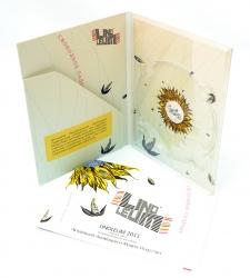 Диджипак DVD формата с карманом для буклета