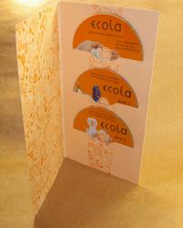 Диджифайл DVD формата 4 полосы на 3 диска. Ecola.